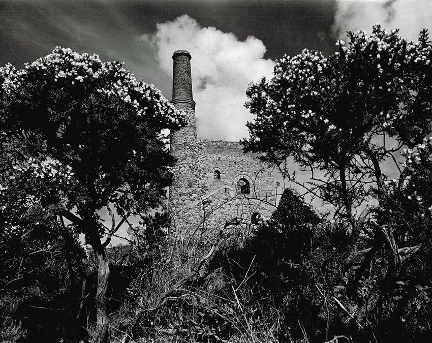 Basset Mines